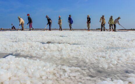 Những thách thức lớn đối với ngành nghề muối Bạc Liêu